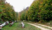 Trail Walk SAINT-JEAN-AUX-BOIS - en forêt de Compiègne_22_la Muette_le Mont Arcy_le Fort Poirier - Photo 81