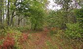 Trail Walk SAINT-JEAN-AUX-BOIS - en forêt de Compiègne_22_la Muette_le Mont Arcy_le Fort Poirier - Photo 155