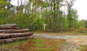 Trail Walk SAINT-JEAN-AUX-BOIS - en forêt de Compiègne_22_la Muette_le Mont Arcy_le Fort Poirier - Photo 43