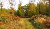 Trail Walk SAINT-JEAN-AUX-BOIS - en forêt de Compiègne_22_la Muette_le Mont Arcy_le Fort Poirier - Photo 47