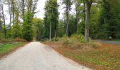 Trail Walk SAINT-JEAN-AUX-BOIS - en forêt de Compiègne_22_la Muette_le Mont Arcy_le Fort Poirier - Photo 7