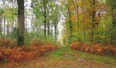 Trail Walk SAINT-JEAN-AUX-BOIS - en forêt de Compiègne_22_la Muette_le Mont Arcy_le Fort Poirier - Photo 136