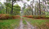 Trail Walk SAINT-JEAN-AUX-BOIS - en forêt de Compiègne_22_la Muette_le Mont Arcy_le Fort Poirier - Photo 118