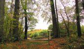 Trail Walk SAINT-JEAN-AUX-BOIS - en forêt de Compiègne_22_la Muette_le Mont Arcy_le Fort Poirier - Photo 74