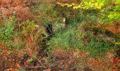 Trail Walk SAINT-JEAN-AUX-BOIS - en forêt de Compiègne_22_la Muette_le Mont Arcy_le Fort Poirier - Photo 45