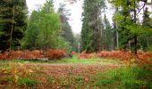 Trail Walk SAINT-JEAN-AUX-BOIS - en forêt de Compiègne_22_la Muette_le Mont Arcy_le Fort Poirier - Photo 92