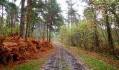 Trail Walk SAINT-JEAN-AUX-BOIS - en forêt de Compiègne_22_la Muette_le Mont Arcy_le Fort Poirier - Photo 122