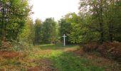 Trail Walk SAINT-JEAN-AUX-BOIS - en forêt de Compiègne_22_la Muette_le Mont Arcy_le Fort Poirier - Photo 49