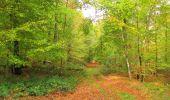 Trail Walk SAINT-JEAN-AUX-BOIS - en forêt de Compiègne_22_la Muette_le Mont Arcy_le Fort Poirier - Photo 53