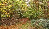 Trail Walk SAINT-JEAN-AUX-BOIS - en forêt de Compiègne_22_la Muette_le Mont Arcy_le Fort Poirier - Photo 56
