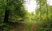 Trail Walk SAINT-JEAN-AUX-BOIS - en forêt de Compiègne_22_la Muette_le Mont Arcy_le Fort Poirier - Photo 52