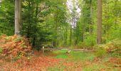 Trail Walk SAINT-JEAN-AUX-BOIS - en forêt de Compiègne_22_la Muette_le Mont Arcy_le Fort Poirier - Photo 73