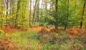 Trail Walk SAINT-JEAN-AUX-BOIS - en forêt de Compiègne_22_la Muette_le Mont Arcy_le Fort Poirier - Photo 16