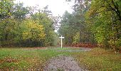 Trail Walk SAINT-JEAN-AUX-BOIS - en forêt de Compiègne_22_la Muette_le Mont Arcy_le Fort Poirier - Photo 148