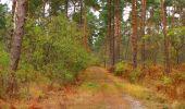 Trail Walk SAINT-JEAN-AUX-BOIS - en forêt de Compiègne_22_la Muette_le Mont Arcy_le Fort Poirier - Photo 68