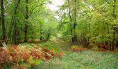 Trail Walk SAINT-JEAN-AUX-BOIS - en forêt de Compiègne_22_la Muette_le Mont Arcy_le Fort Poirier - Photo 124