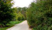 Trail Walk SAINT-JEAN-AUX-BOIS - en forêt de Compiègne_22_la Muette_le Mont Arcy_le Fort Poirier - Photo 12