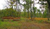 Trail Walk SAINT-JEAN-AUX-BOIS - en forêt de Compiègne_22_la Muette_le Mont Arcy_le Fort Poirier - Photo 23
