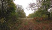 Trail Walk SAINT-JEAN-AUX-BOIS - en forêt de Compiègne_22_la Muette_le Mont Arcy_le Fort Poirier - Photo 156