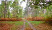Trail Walk SAINT-JEAN-AUX-BOIS - en forêt de Compiègne_22_la Muette_le Mont Arcy_le Fort Poirier - Photo 120