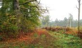 Trail Walk SAINT-JEAN-AUX-BOIS - en forêt de Compiègne_22_la Muette_le Mont Arcy_le Fort Poirier - Photo 141