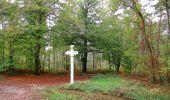 Trail Walk SAINT-JEAN-AUX-BOIS - en forêt de Compiègne_22_la Muette_le Mont Arcy_le Fort Poirier - Photo 117