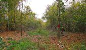 Trail Walk SAINT-JEAN-AUX-BOIS - en forêt de Compiègne_22_la Muette_le Mont Arcy_le Fort Poirier - Photo 27