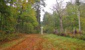 Trail Walk SAINT-JEAN-AUX-BOIS - en forêt de Compiègne_22_la Muette_le Mont Arcy_le Fort Poirier - Photo 140