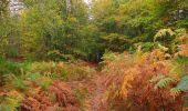 Trail Walk SAINT-JEAN-AUX-BOIS - en forêt de Compiègne_22_la Muette_le Mont Arcy_le Fort Poirier - Photo 35