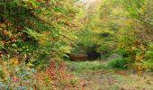 Trail Walk SAINT-JEAN-AUX-BOIS - en forêt de Compiègne_22_la Muette_le Mont Arcy_le Fort Poirier - Photo 111