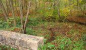 Trail Walk SAINT-JEAN-AUX-BOIS - en forêt de Compiègne_22_la Muette_le Mont Arcy_le Fort Poirier - Photo 134