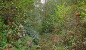 Trail Walk SAINT-JEAN-AUX-BOIS - en forêt de Compiègne_22_la Muette_le Mont Arcy_le Fort Poirier - Photo 11