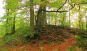 Trail Walk SAINT-JEAN-AUX-BOIS - en forêt de Compiègne_22_la Muette_le Mont Arcy_le Fort Poirier - Photo 61
