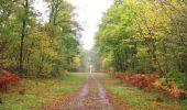 Trail Walk SAINT-JEAN-AUX-BOIS - en forêt de Compiègne_22_la Muette_le Mont Arcy_le Fort Poirier - Photo 152