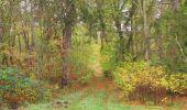 Trail Walk SAINT-JEAN-AUX-BOIS - en forêt de Compiègne_22_la Muette_le Mont Arcy_le Fort Poirier - Photo 147