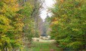Trail Walk SAINT-JEAN-AUX-BOIS - en forêt de Compiègne_22_la Muette_le Mont Arcy_le Fort Poirier - Photo 82