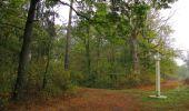 Trail Walk SAINT-JEAN-AUX-BOIS - en forêt de Compiègne_22_la Muette_le Mont Arcy_le Fort Poirier - Photo 142