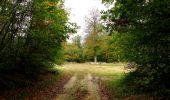 Trail Walk SAINT-JEAN-AUX-BOIS - en forêt de Compiègne_22_la Muette_le Mont Arcy_le Fort Poirier - Photo 80