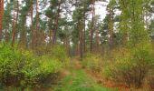 Trail Walk SAINT-JEAN-AUX-BOIS - en forêt de Compiègne_22_la Muette_le Mont Arcy_le Fort Poirier - Photo 67