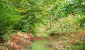 Trail Walk SAINT-JEAN-AUX-BOIS - en forêt de Compiègne_22_la Muette_le Mont Arcy_le Fort Poirier - Photo 87