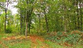 Trail Walk SAINT-JEAN-AUX-BOIS - en forêt de Compiègne_22_la Muette_le Mont Arcy_le Fort Poirier - Photo 76
