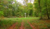 Trail Walk SAINT-JEAN-AUX-BOIS - en forêt de Compiègne_22_la Muette_le Mont Arcy_le Fort Poirier - Photo 75
