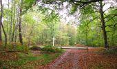Trail Walk SAINT-JEAN-AUX-BOIS - en forêt de Compiègne_22_la Muette_le Mont Arcy_le Fort Poirier - Photo 116