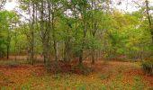 Trail Walk SAINT-JEAN-AUX-BOIS - en forêt de Compiègne_22_la Muette_le Mont Arcy_le Fort Poirier - Photo 30
