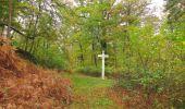 Trail Walk SAINT-JEAN-AUX-BOIS - en forêt de Compiègne_22_la Muette_le Mont Arcy_le Fort Poirier - Photo 59