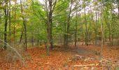 Trail Walk SAINT-JEAN-AUX-BOIS - en forêt de Compiègne_22_la Muette_le Mont Arcy_le Fort Poirier - Photo 29
