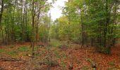 Trail Walk SAINT-JEAN-AUX-BOIS - en forêt de Compiègne_22_la Muette_le Mont Arcy_le Fort Poirier - Photo 31