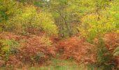 Trail Walk SAINT-JEAN-AUX-BOIS - en forêt de Compiègne_22_la Muette_le Mont Arcy_le Fort Poirier - Photo 58