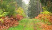 Trail Walk SAINT-JEAN-AUX-BOIS - en forêt de Compiègne_22_la Muette_le Mont Arcy_le Fort Poirier - Photo 132