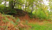 Trail Walk SAINT-JEAN-AUX-BOIS - en forêt de Compiègne_22_la Muette_le Mont Arcy_le Fort Poirier - Photo 60